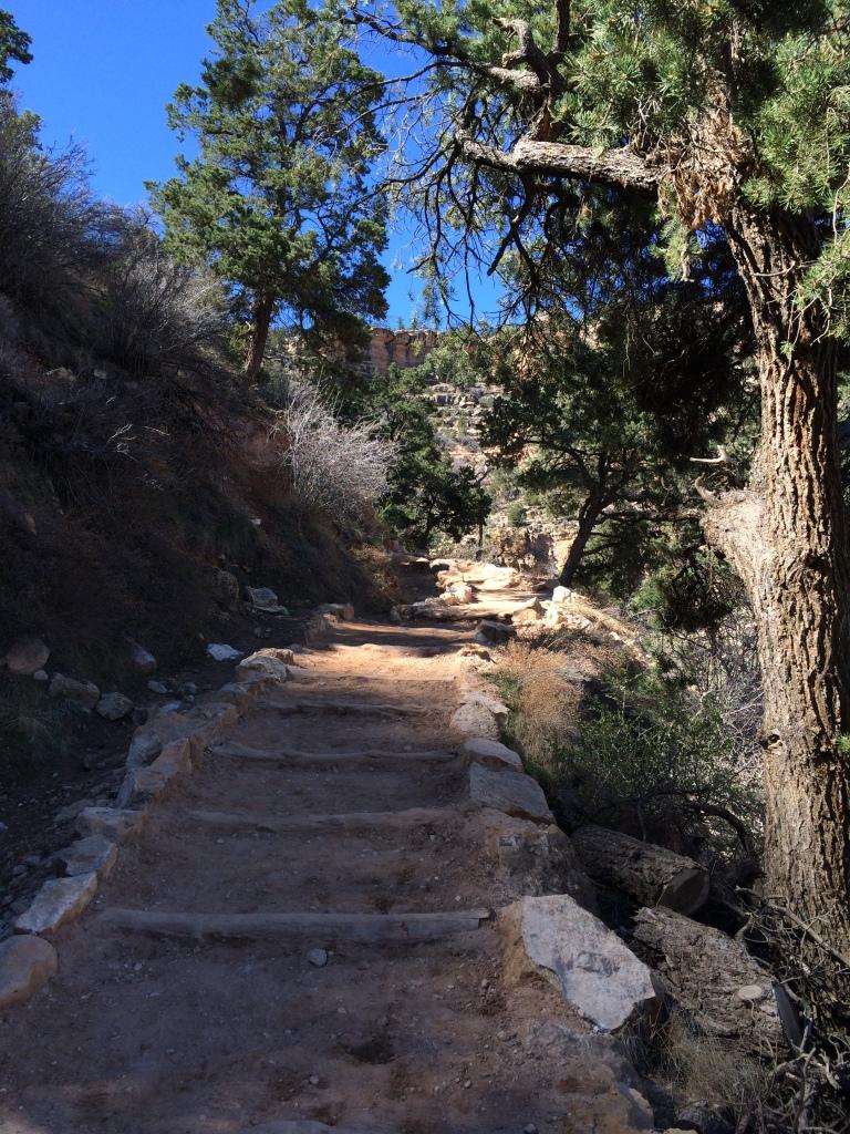 Bright Angel Trail, Grand Canyon, AZ_3